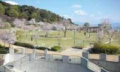 松山総合公園